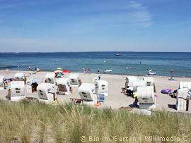 Badestrand in Ostholstein