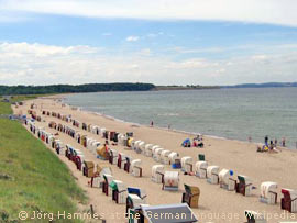 Urlaub Mit Hund Weissenhauser Strand Ferienhauser Ferienwohnungen