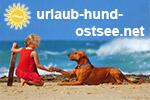 Urlaub mit Hund Ostsee buchen